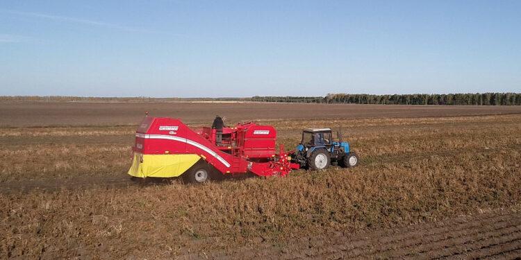 Засуха лишила Чувашию значительной части урожая корнеплодов и зерновых культур